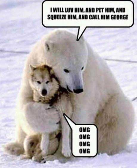1800PetsAndVets® Humor http://1800PetsAndVets.com/
